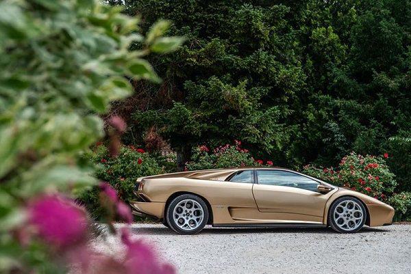 Des chèvres transportées en Lamborghini